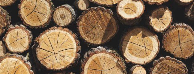 Explotaciones de madera sostenibles